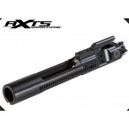 AXTS Black Nitride Bolt Carrier Group